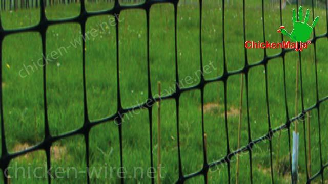 Chicken wire at detail