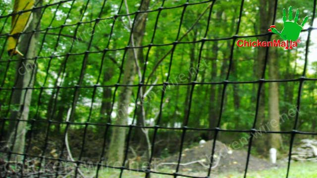Chicken wire for forest application