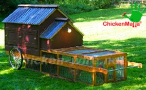 Cluck House