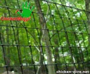 Chicken wire installed in a field