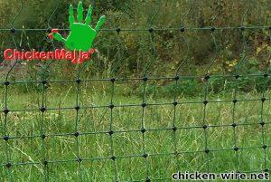 Chicken wire installed in field