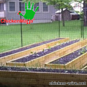 Chicken wire installed in backyard