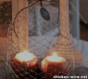 Chicken wire ideas